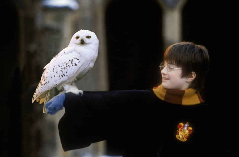 harry potter character quiz all characters